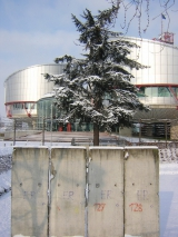 <h5>Thanks francois</h5><p>&lt;a href=http://commons.wikimedia.org/wiki/File:Piece_of_Berlin_Wall_in_front_of_the_European_Court_of_Human_Rights,_Strasbourg.jpg#mediaviewer/File:Piece_of_Berlin_Wall_in_front_of_the_European_Court_of_Human_Rights,_Strasbourg.jpg&quot; target=&quot;_blank&quot;&gt;Piece of Berlin Wall in front of the European Court of Human Rights, Strasbourg&lt;/a&gt;&quot; by &lt;a rel=&quot;nofollow&quot; class=&quot;external text&quot; href=&quot;http://www.flickr.com/photos/54576824@N00&quot; target=&quot;_blank&quot;&gt;francois&lt;/a&gt; from Strasbourg, france - &lt;a rel=&quot;nofollow&quot; class=&quot;external text&quot; href=&quot;http://www.flickr.com/photos/frenchy/79366435/&quot; target=&quot;_blank&quot;&gt;Part of the berlin wall in front of the Human&#039;s Right building&lt;/a&gt;. Licensed under &lt;a href=&quot;http://creativecommons.org/licenses/by/2.0&quot; title=&quot;Creative Commons Attribution 2.0&quot; target=&quot;_blank&quot;&gt;CC BY 2.0&lt;/a&gt; via &lt;a href=&quot;//commons.wikimedia.org/wiki/&quot; target=&quot;_blank&quot;&gt;Wikimedia Commons&lt;/a&gt;.</p>